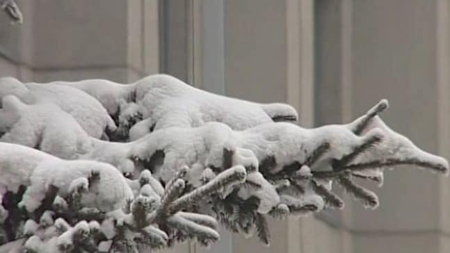 На Красноярский край надвигаются аномальные холода